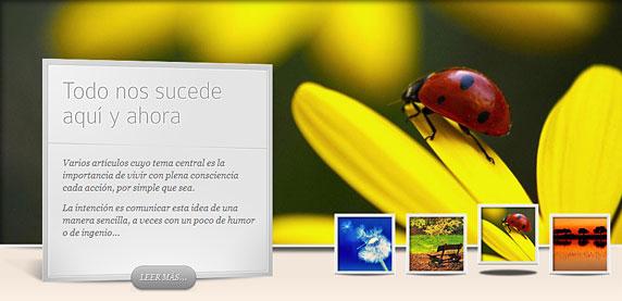 Image du site 'Sereinement' (https://serenamente-fr.amarseaunomismo.com/)